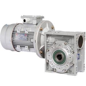 浙江东方传动机械NMRV蜗轮蜗杆减速机